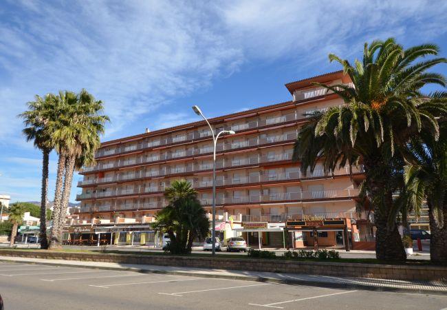 Apartamento en Rosas / Roses - IRAR04-APARTAMENTO JUNTO A LA PLAYA